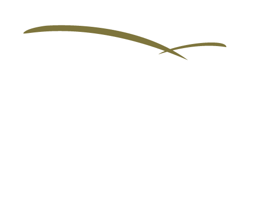 Cynergy Data Systems